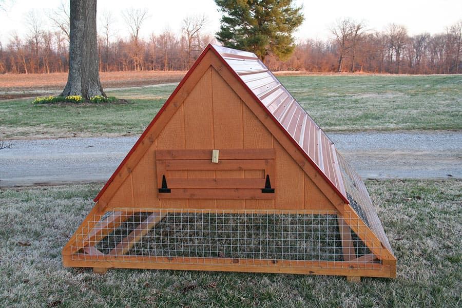 Horse-run-in-shed-and-chicken-coop-designs-in-tn